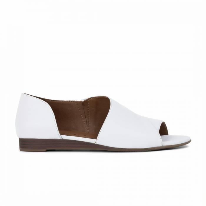 Sandalo 1902