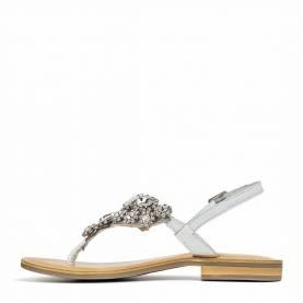 Sandalo 2029
